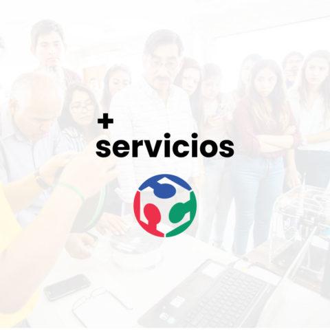 + Servicios